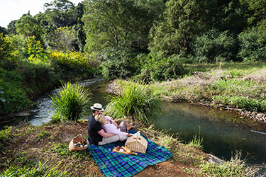 Couple relaxing by creek on picnic rug
