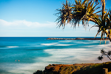 Lighthouse beach and north wall with pandanus tree