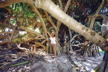 girl under pandanus at beach1 Custom