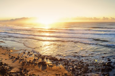 panorama shelly beach 375 x 250