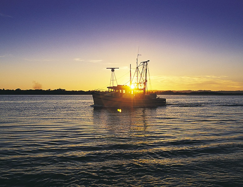 Trawler in the Richmond River