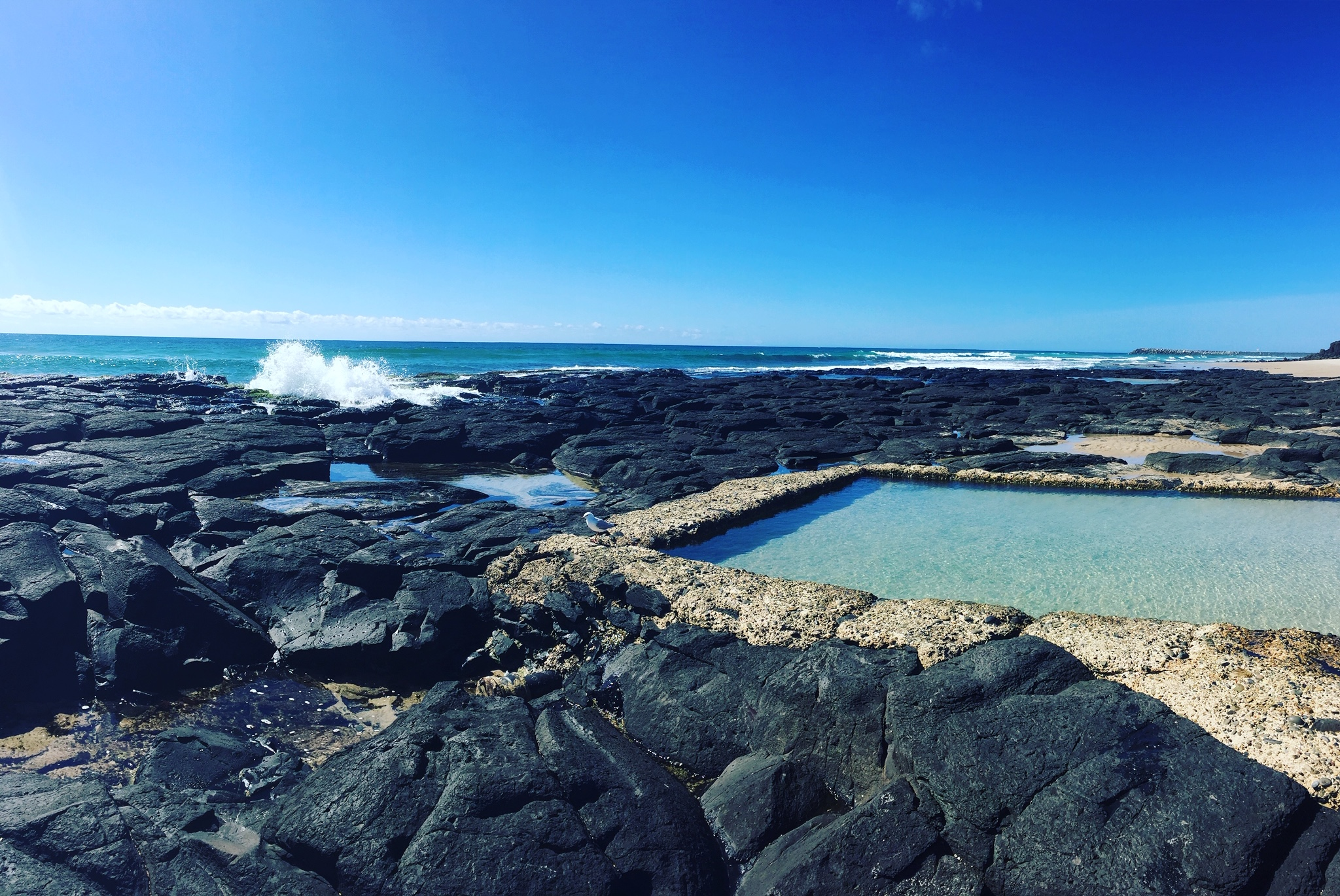 Shelly Rockpools