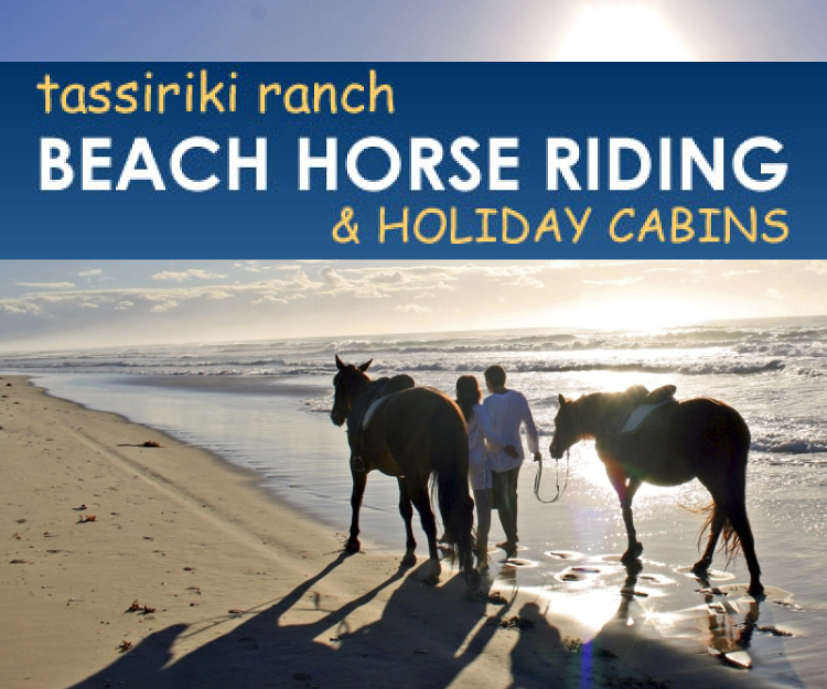 Tassiriki Ranch Beach Horse Riding Advertisement