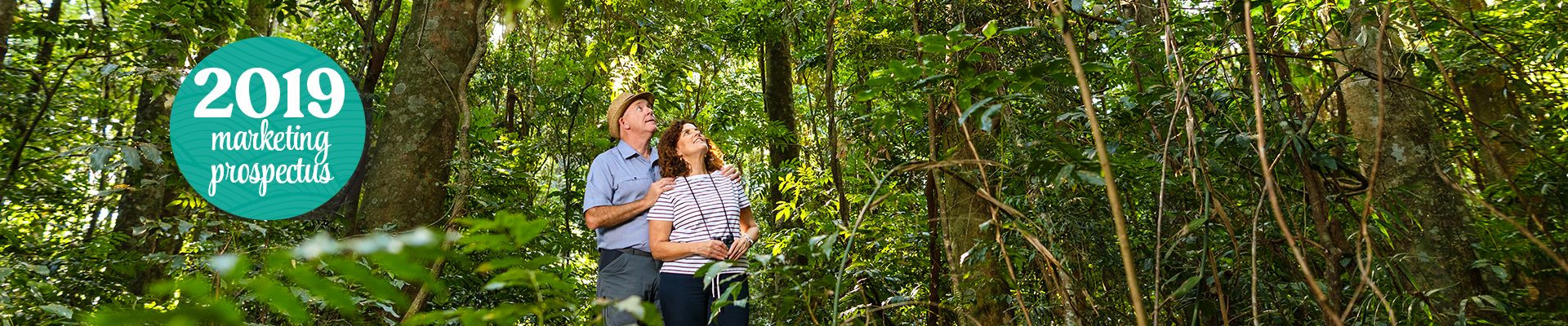 Couple looking at rainforest