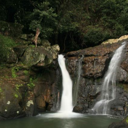 Glow Worm and Waterfall Tour -Rise Up Byron Conscious Tours